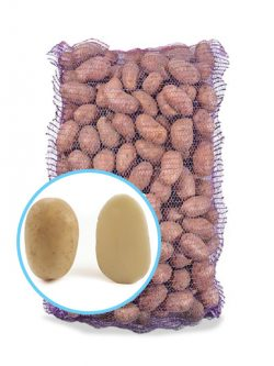 Насіннєва картопля САВАННА